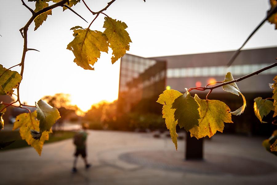 New trees adding diversity, research to Missouri Arboretum