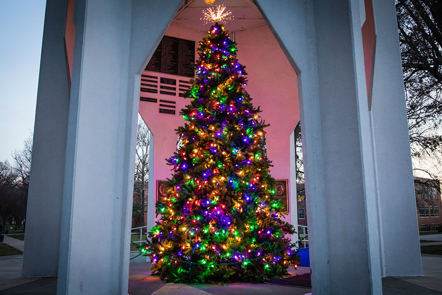 Holiday tree spreading cheer to campus; donations sought for food pantry
